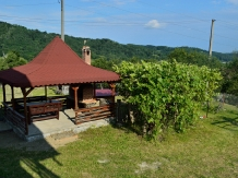 Pensiunea Sus in Deal - accommodation in  Fagaras and nearby, Transfagarasan (02)