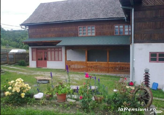 Casa Eugen - accommodation in  Fagaras and nearby (02)