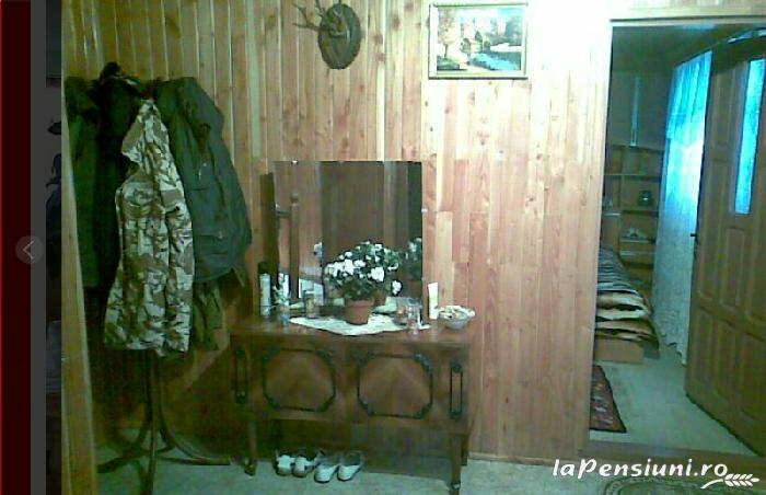 Casa Eugen - accommodation in  Fagaras and nearby (11)