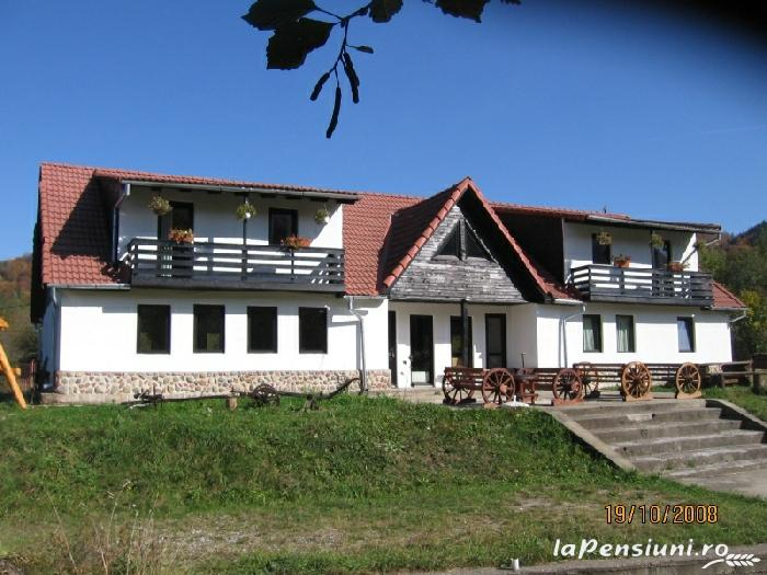 Pensiunea Natur Haus - accommodation in  Fagaras and nearby, Sambata (01)