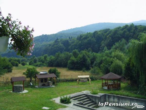 Pensiunea Natur Haus - accommodation in  Fagaras and nearby, Sambata (02)