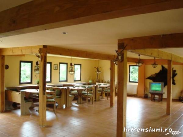 Pensiunea Natur Haus - accommodation in  Fagaras and nearby, Sambata (04)