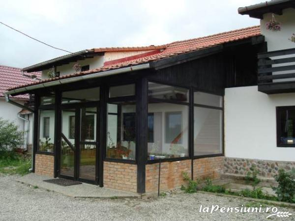 Pensiunea Natur Haus - accommodation in  Fagaras and nearby, Sambata (10)