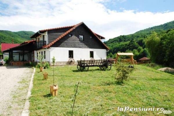 Pensiunea Natur Haus - accommodation in  Fagaras and nearby, Sambata (11)