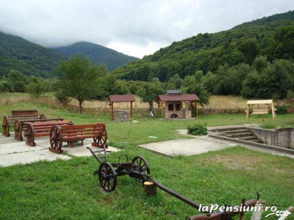 Pensiunea Natur Haus - accommodation in  Fagaras and nearby, Sambata (15)