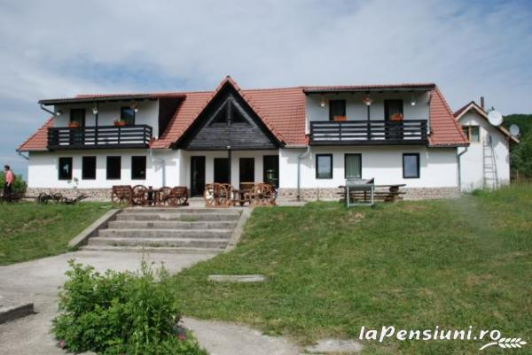 Pensiunea Natur Haus - accommodation in  Fagaras and nearby, Sambata (16)