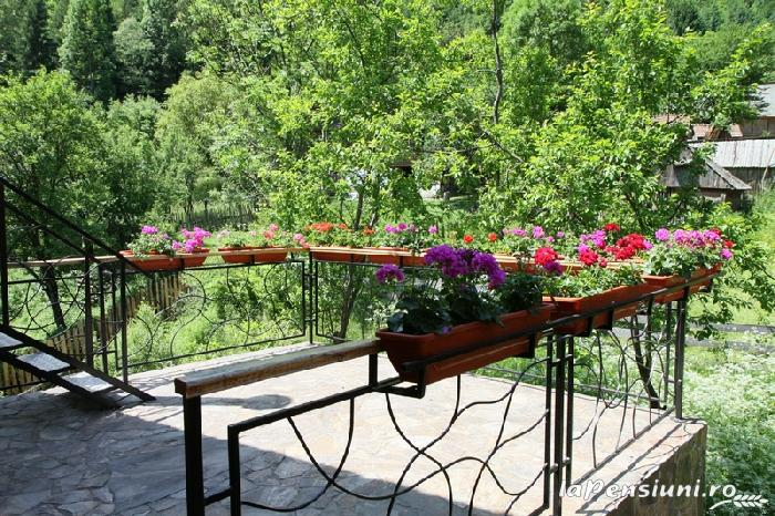 Pensiunea La Tovipan - accommodation in  Motilor Country, Arieseni (12)