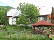 Casa din Poiana - accommodation in  Motilor Country, Arieseni (01)