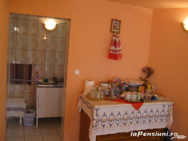 Casa din Poiana - accommodation in  Motilor Country, Arieseni (03)
