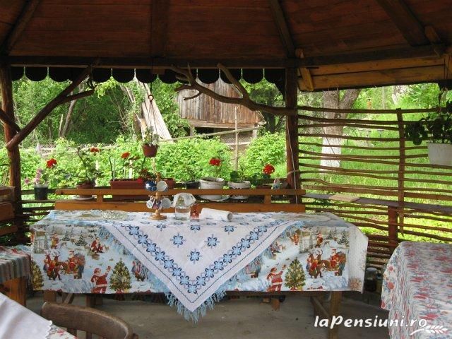 Casa din Poiana - accommodation in  Motilor Country, Arieseni (07)