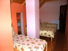Pensiunea Motilor - accommodation in  Motilor Country, Arieseni (03)