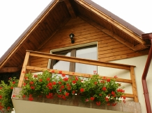 Cabana Cotul Ariesului - accommodation in  Apuseni Mountains, Motilor Country, Arieseni (10)