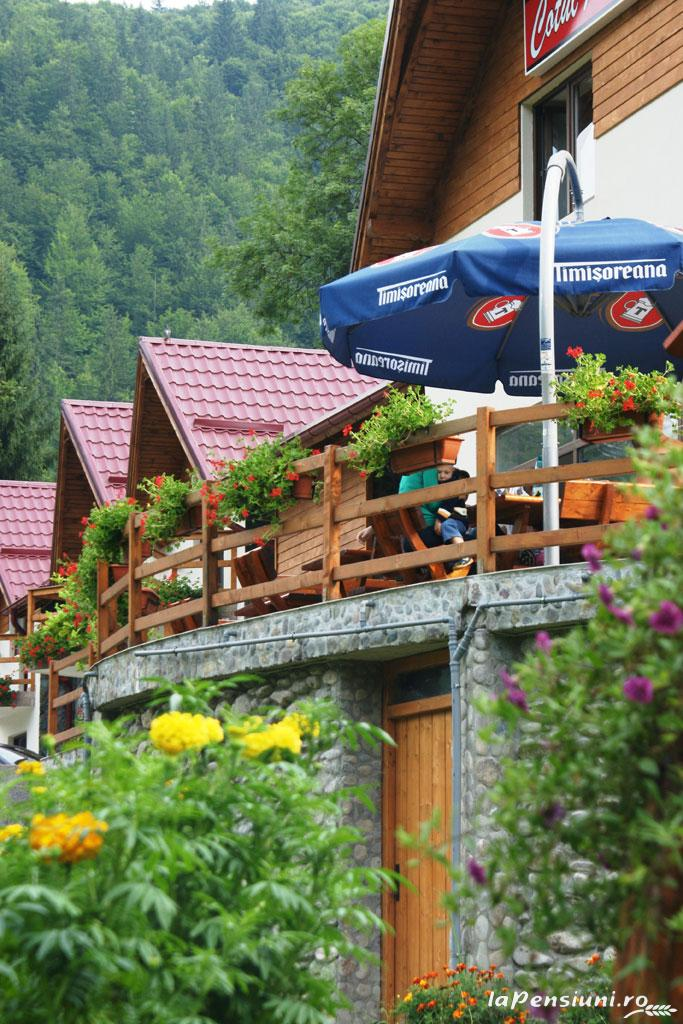 Cabana Cotul Ariesului - accommodation in  Apuseni Mountains, Motilor Country, Arieseni (11)