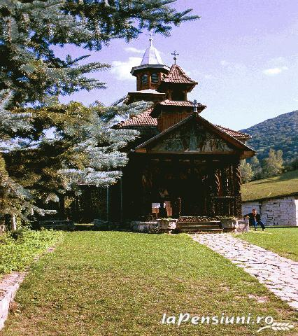 Pensiunea sub Piatra - accommodation in  Motilor Country, Arieseni (14)