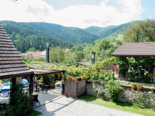Casa din Vale - accommodation in  Sibiu Surroundings (09)