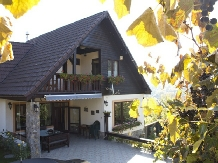 Casa din Vale - accommodation in  Sibiu Surroundings (11)