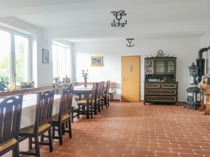 Pensiunea Ileana - accommodation in  Sibiu Surroundings (02)