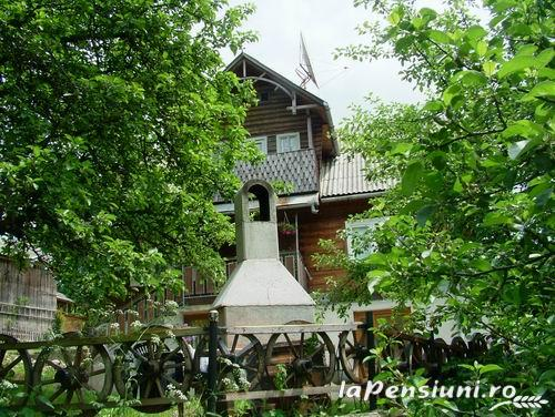 Cabana Viselor - accommodation in  Apuseni Mountains, Motilor Country, Arieseni (05)