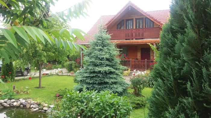 Pensiunea Karina - accommodation in  Sibiu Surroundings (04)