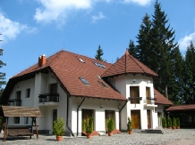 Vila Daria - accommodation in  Brasov Depression (01)