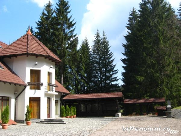 Vila Daria - accommodation in  Brasov Depression (04)