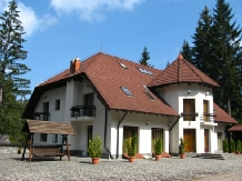 Vila Daria - accommodation in  Brasov Depression (05)
