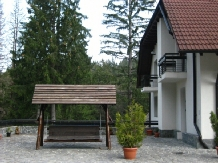 Vila Daria - accommodation in  Brasov Depression (06)