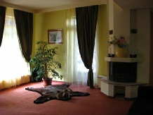Vila Daria - accommodation in  Brasov Depression (09)