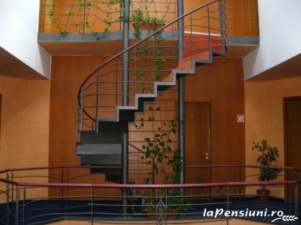 Vila Daria - accommodation in  Brasov Depression (10)