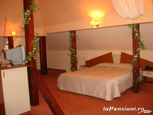 Vila Daria - accommodation in  Brasov Depression (12)