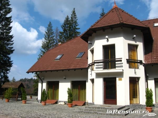 Vila Daria - accommodation in  Brasov Depression (16)