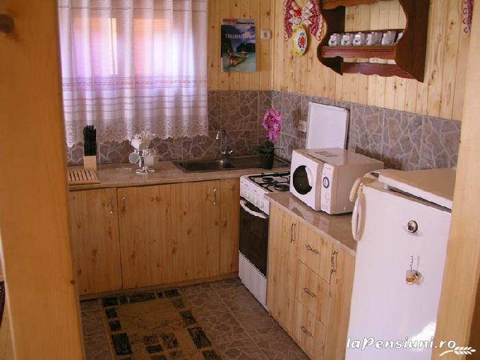 Cabana Vistioara - accommodation in  Fagaras and nearby, Sambata (02)