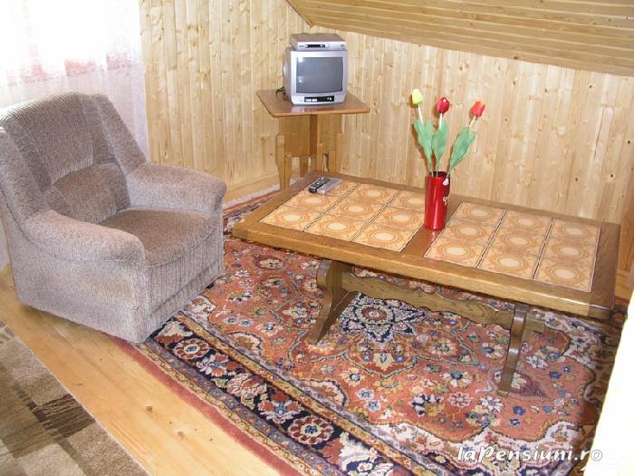 Cabana Vistioara - accommodation in  Fagaras and nearby, Sambata (03)