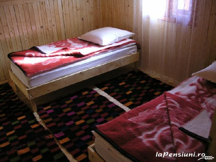 Cabana Vistioara - accommodation in  Fagaras and nearby, Sambata (04)