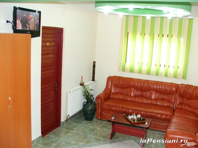 Pensiunea Georgiana - accommodation in  Fagaras and nearby, Muscelului Country (02)