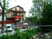 Pensiunea Georgiana - accommodation in  Fagaras and nearby, Muscelului Country (04)