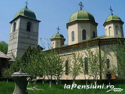 Pensiunea Georgiana - accommodation in  Fagaras and nearby, Muscelului Country (Surrounding)