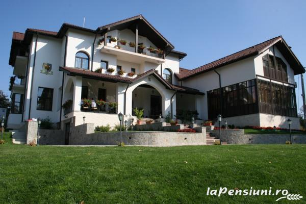 Casa Domneasca - accommodation in  Fagaras and nearby, Muscelului Country (02)