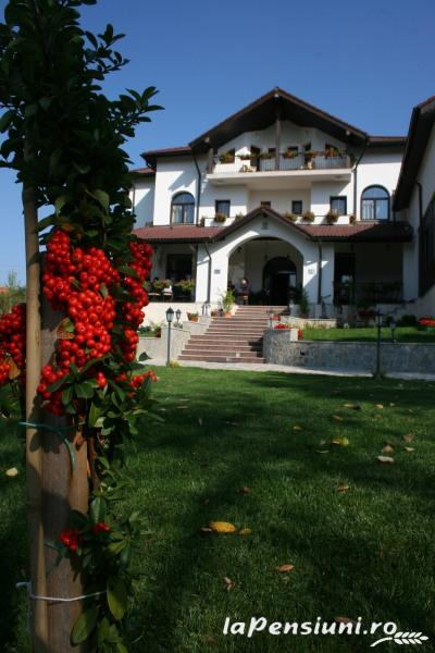 Casa Domneasca - accommodation in  Fagaras and nearby, Muscelului Country (04)