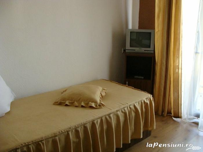 Pensiunea Matrix - accommodation in  Fagaras and nearby, Muscelului Country (04)