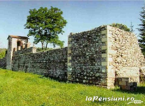 Pensiunea Matrix - accommodation in  Fagaras and nearby, Muscelului Country (Surrounding)