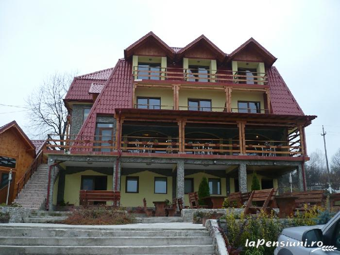 Pensiunea Danvi - accommodation in  Fagaras and nearby, Transfagarasan, Muscelului Country (01)
