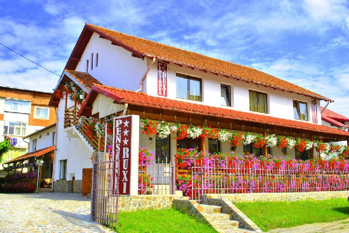 Pensiunea Ruxi - accommodation in  Fagaras and nearby, Muscelului Country (01)