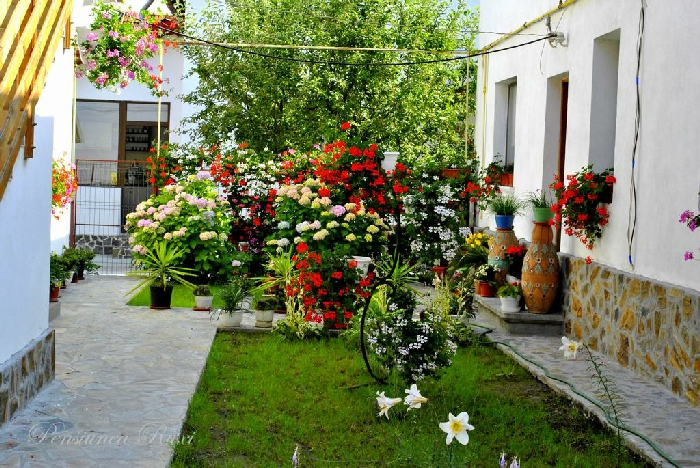 Pensiunea Ruxi - accommodation in  Fagaras and nearby, Muscelului Country (02)