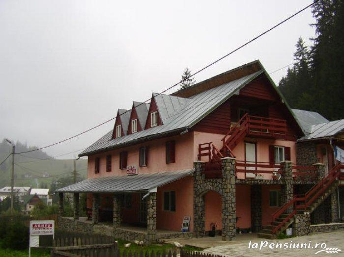 Pensiunea Agnes - accommodation in  Ceahlau Bicaz, Durau (01)