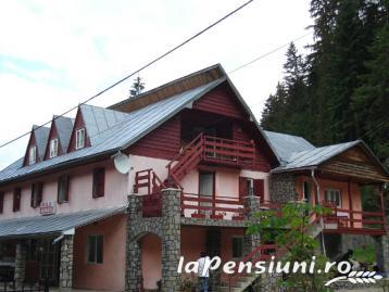 Pensiunea Agnes - accommodation in  Ceahlau Bicaz, Durau (07)