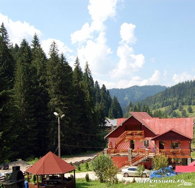 Pensiunea Agnes - accommodation in  Ceahlau Bicaz, Durau (12)