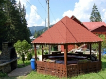 Pensiunea Agnes - accommodation in  Ceahlau Bicaz, Durau (16)