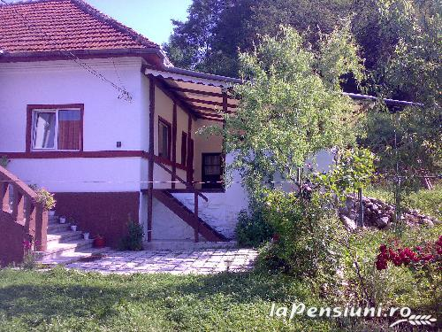 Pensiunea Ana - accommodation in  Muscelului Country (03)