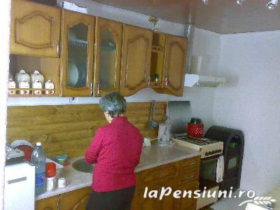 Pensiunea Ana - accommodation in  Muscelului Country (05)